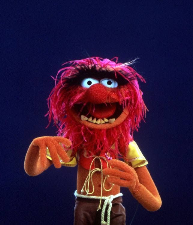 277 Best Muppets Images On Pinterest: 220 Best Images About Muppets