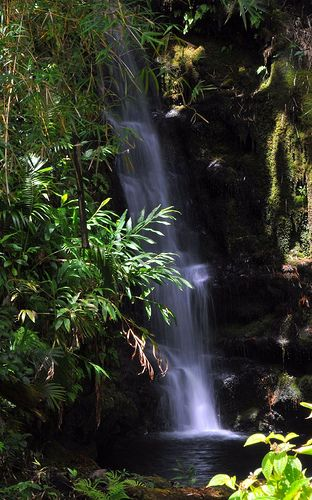 A smaller set of falls near Akaka Falls, Big Island, Hawaii