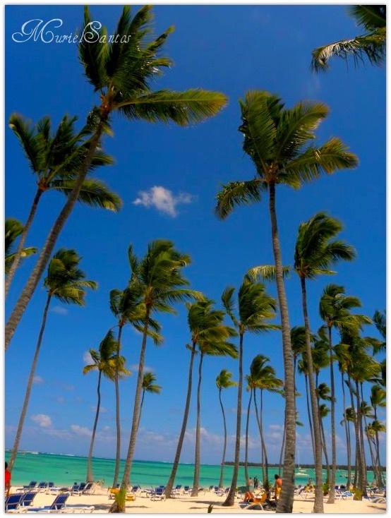 playa, beach, punta cana, republica dominicana, dominican republicPunta Cana, Dominican Republic, Dominican Republic