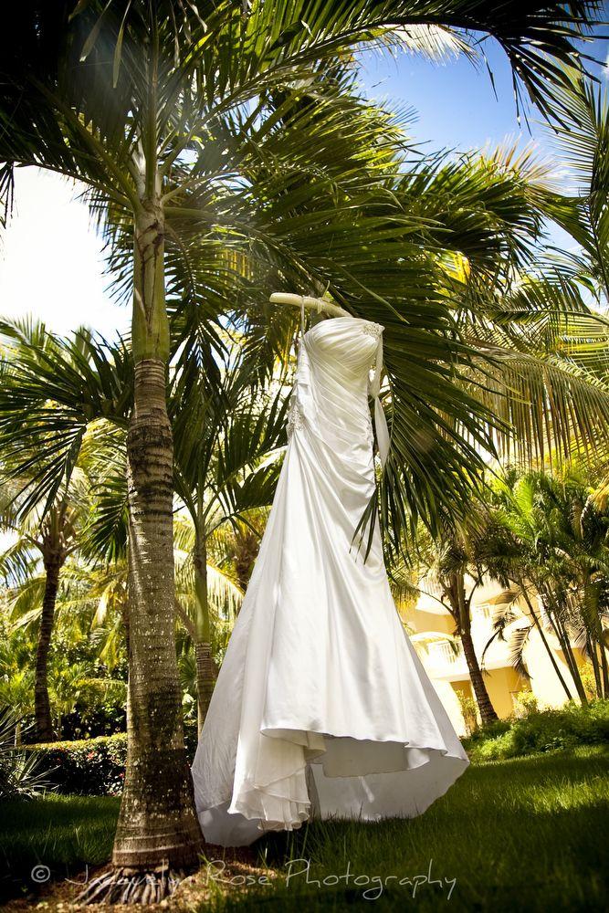 Palm Beach Wedding Dress : Jacquelyn rose photography jrosefoto wedding