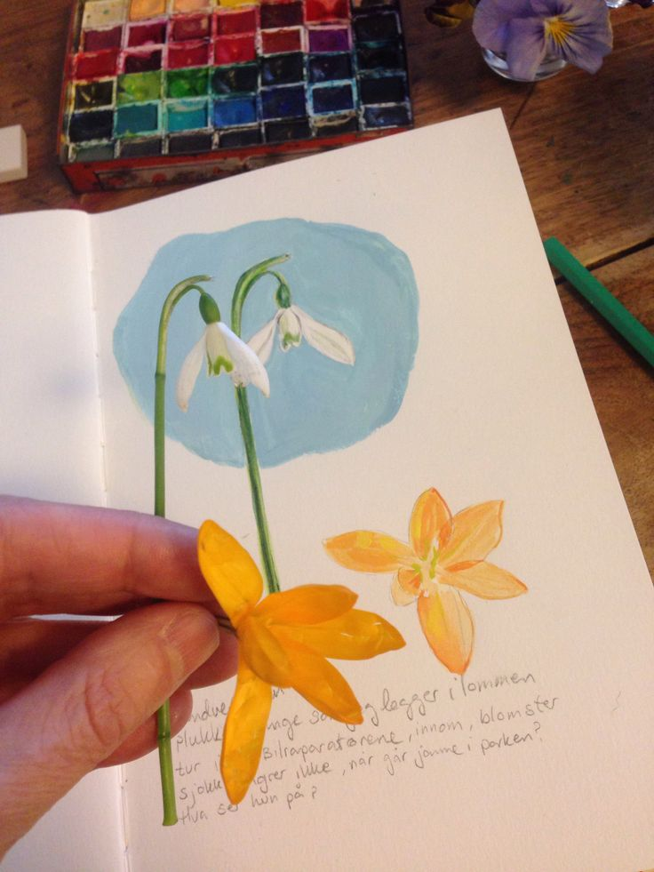 watercolore flower, sketch book