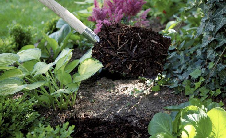 ber ideen zu rindenmulch auf pinterest labyrinthgarten wei er kies und rearrange. Black Bedroom Furniture Sets. Home Design Ideas