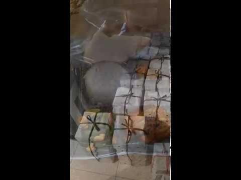 Madriga Catering 08118888653: 085692092435 Pesan Nasi Box Di Duren Sawit