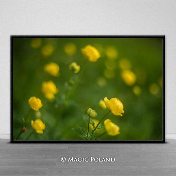 Nature Art Photography Digital Prints Instant Download