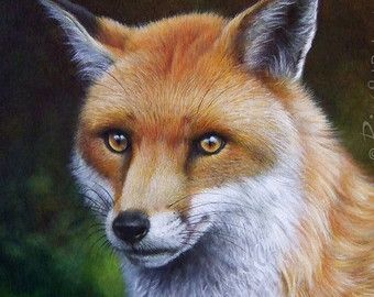 The Fox - Original Fox Painting | Wildlife Art by Roberto Rizzo