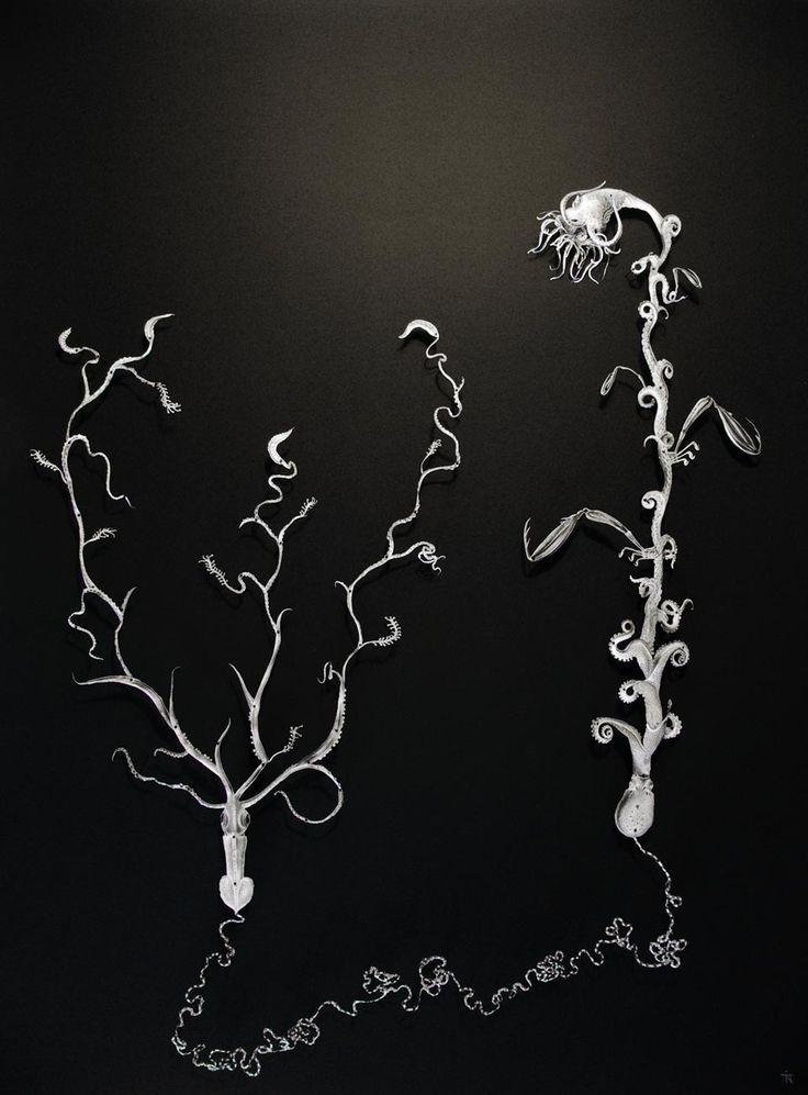 Deep Sea Fossil, 64 x 84 cm, in glass display, 2016 by  Iben Toft Nørgård