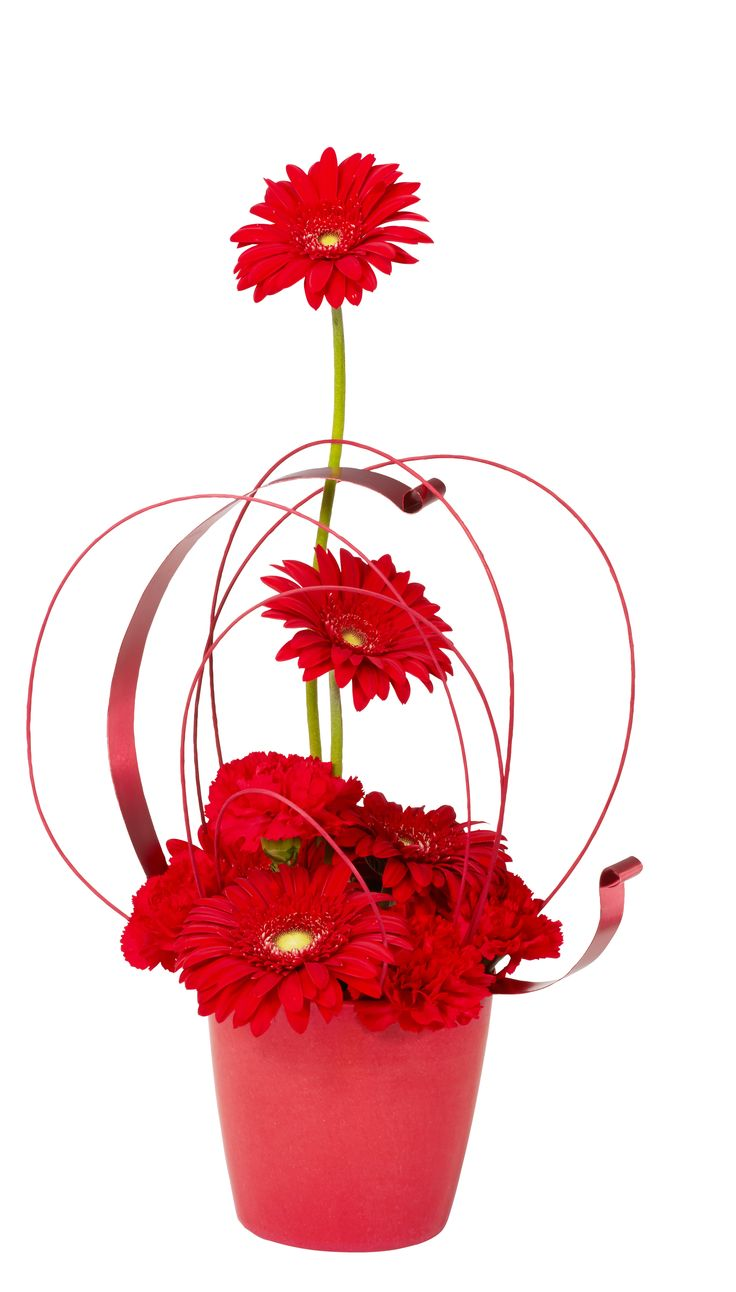 Work with shades of red this Valentine's Day! The ever popular Gerbera Daisy sets the tone for this playful floral design.