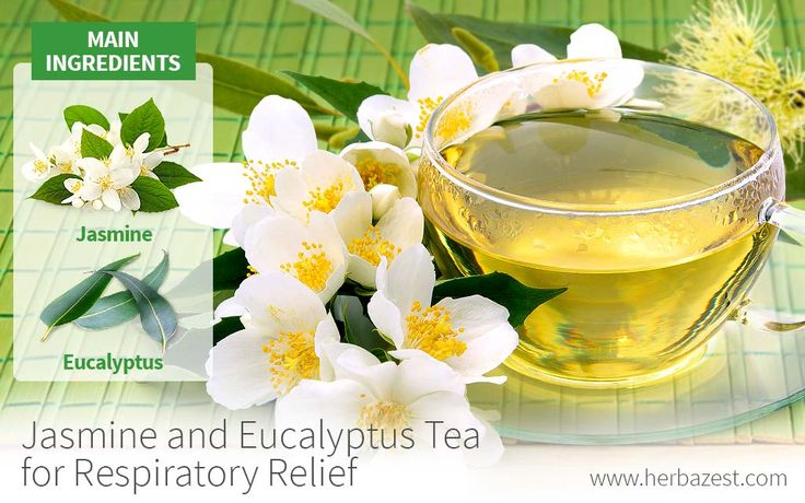 Jasmine and eucalyptus tea for respiratory relief. Try this blended tea at home: https://www.herbazest.com/remedies/jasmine-and-eucalyptus-tea-for-respiratory-relief #Herbazest #wellness #natural #remedies #jasmine #eucalyptus #asthma