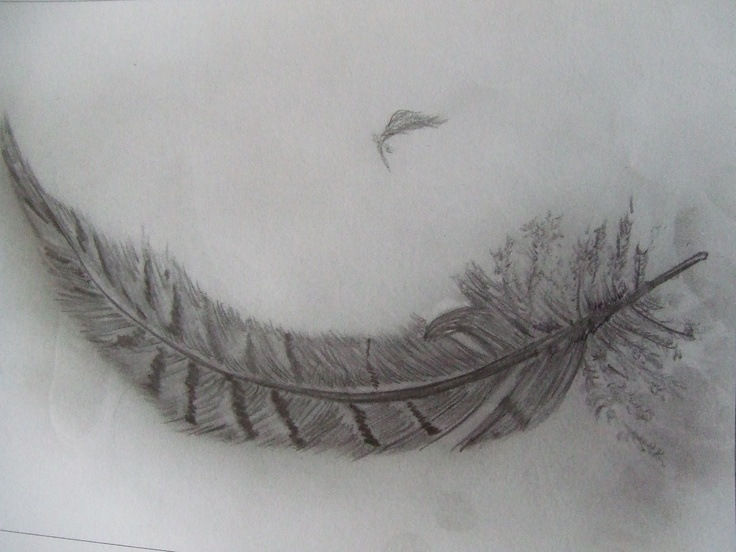 Pencil Sketch Feather Catherine Sothern