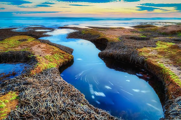 Rock pools along the Victorian Surf Coast just outside of Barwon Heads. Looks like a perfect place for alien life form to spring forth.