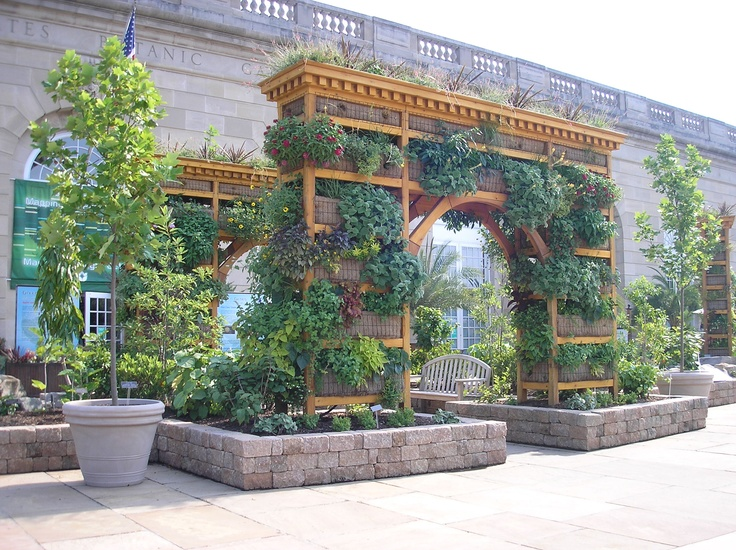 Living Arch. US Botanic Garden, Washington DC. Photo By Steve Golse. 7