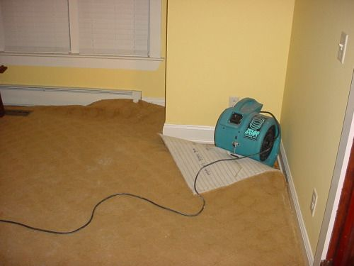 How does #wetcarpet damage a property? Seeking a professional assistance for #dryingcarpets? Visit us today >> http://goo.gl/EuB5ar