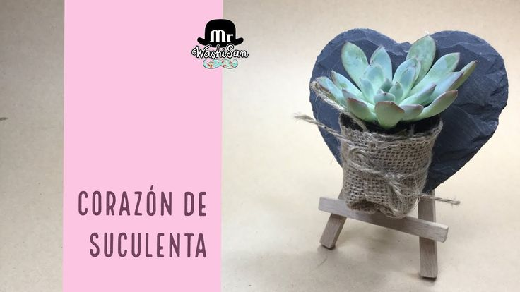 Corazon de suculenta. Echeveria Plantada En Tela De Saco Y Pizarra