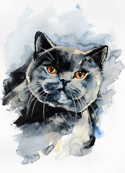 water painting cat | Art & Photography | Watercolor cat ...