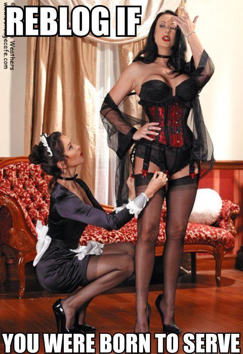 Sexy maid femdom