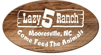 Lazy 5 Ranch -  2015 Fall Festival October 3rd - November 1st:  Admission $11. Monday – Saturday: 9 a.m. until 1 hour before sunset Sunday: 	1 p.m. until 1 hour before sunset. No credit cards or pets