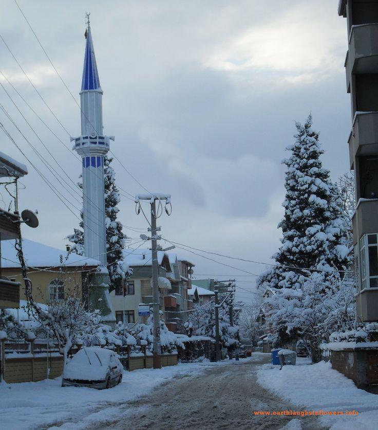 Winter in Turkey, view of a mosque in Adapazari
