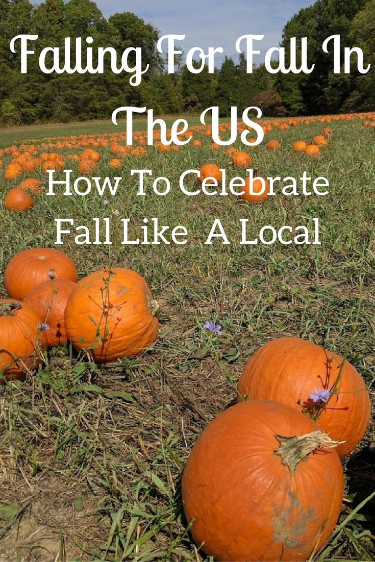Falling For Fall In The US 51