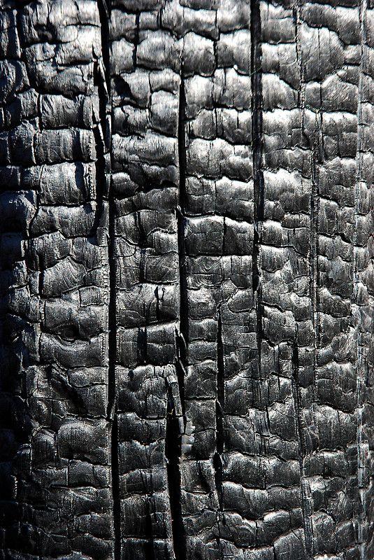 black texture // charcoal