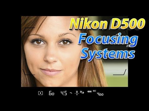 Nikon D500 Tutorial Part 2 | How To Focus Training | NIKON-TUTORIALS