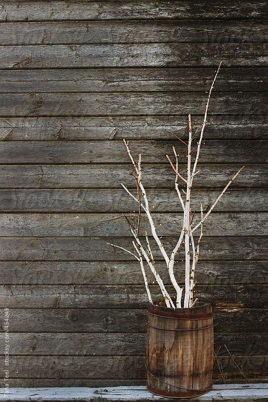 Birch branches lit with string of tiny lights gathered in rustic barrel by Tanateel | Stocksy United