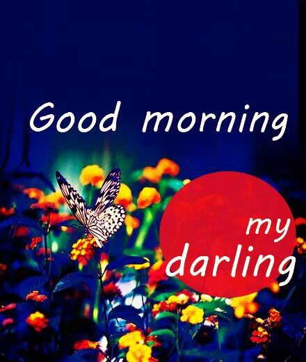 Good Morning Darling Pics : Best images about good morning darling on pinterest