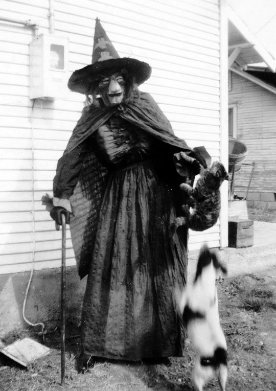 Vixens and Monsters — gravesandghouls:   Halloween witch costume c. 1948