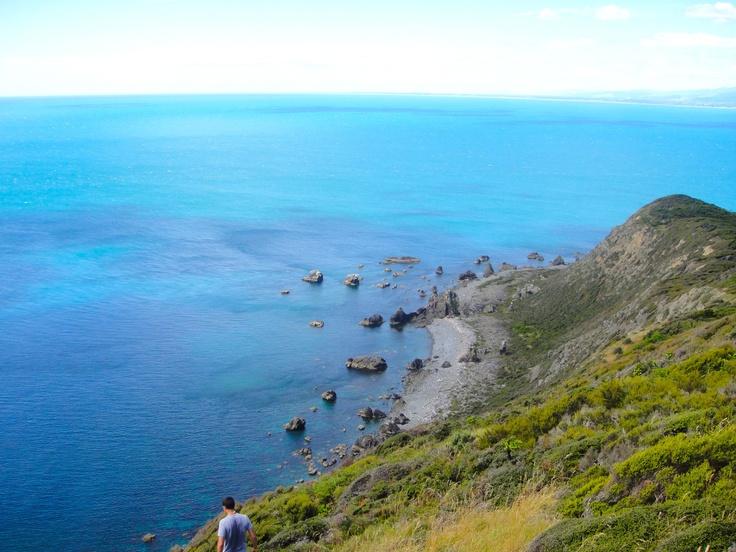 on top of Kapiti Island