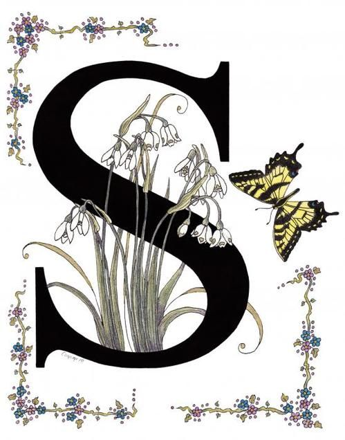 Snowdrops Snowflakes And A Swallowtail Print By Constance Widen
