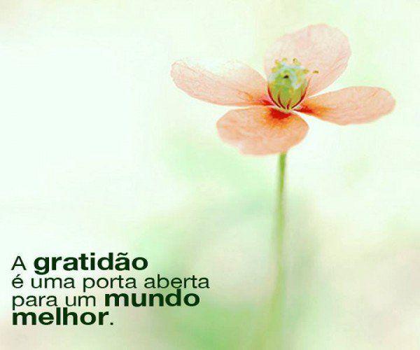 Por Dentro... em Rosa: Razões para sorrir e agradecer agora mesmo