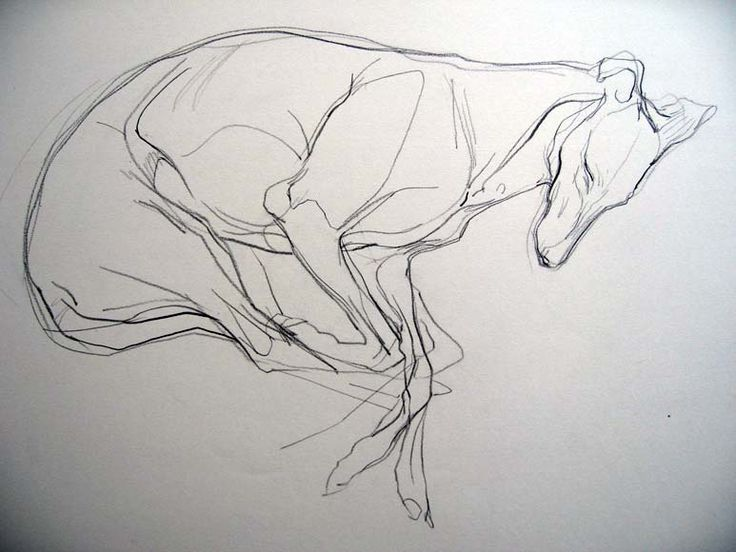 Jo Taylor  Bubble V, Sepia crayon, 21 x 29 in