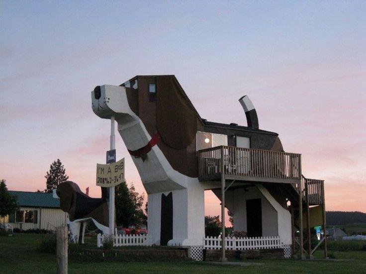 """Questo cane è un Bed & Breakfast (""""Dog Bark Park Inn"""") - Idaho"""