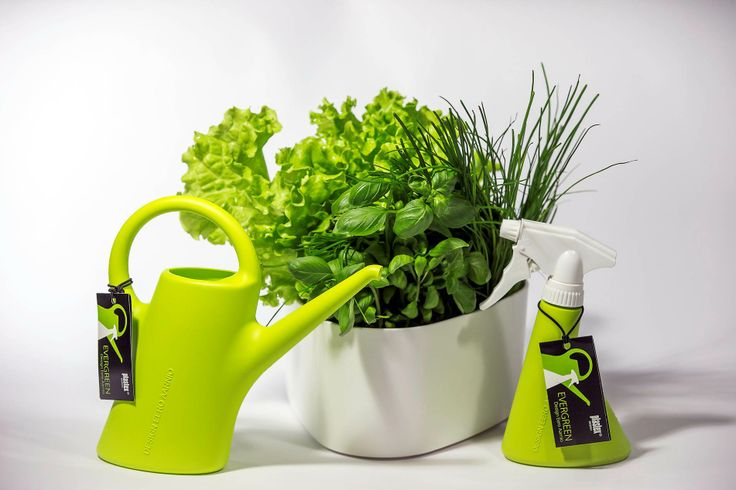 Itsekasteleva yrttiruukku ja pikku EverGreenit! Herb pot and small EverGreen. Made in Finland.