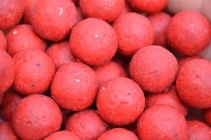 Carp Fishing. Boilies is my No.1 best carp bait. Read what I have to say about this classic carp bait! http://bestbaitforcarpfishing.com/best-bait-for-carp-fishing-no-1-boilies