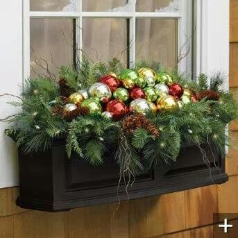 Something for window boxes