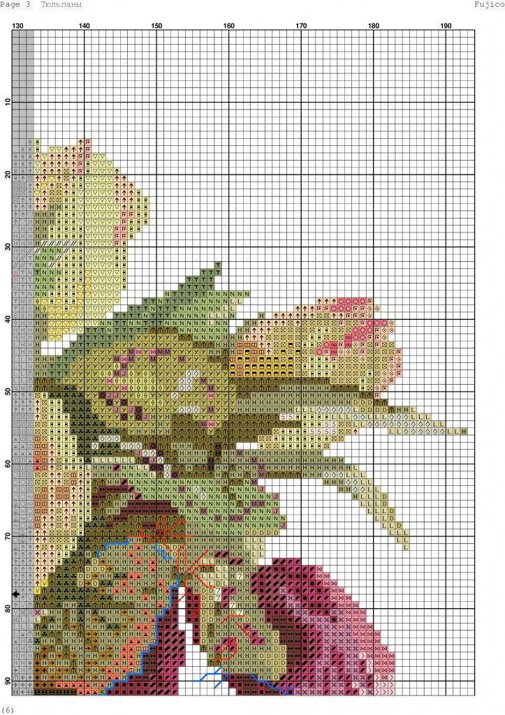 tulipani-5