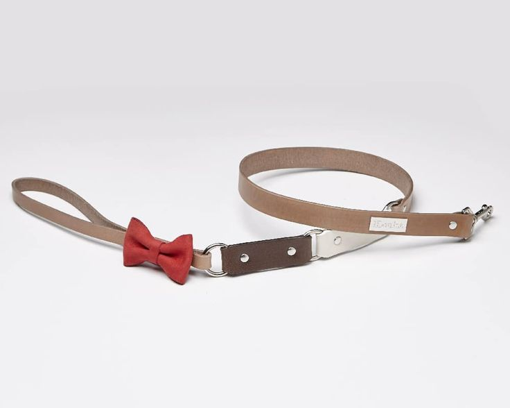 Canel - Luxury leather dog leash | Signe Louka