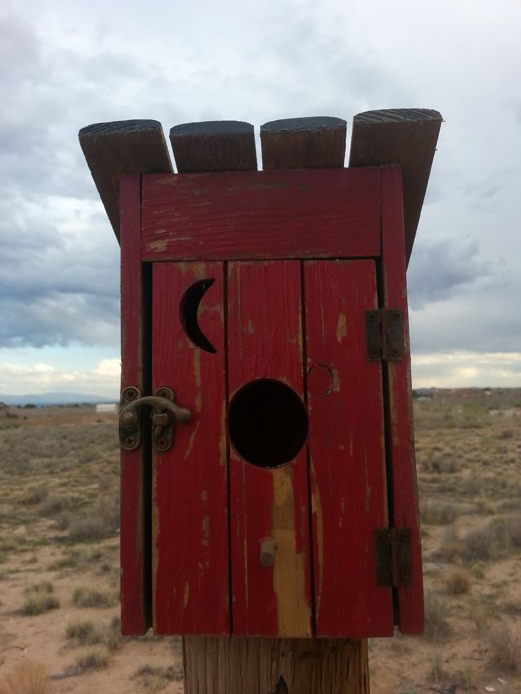 A little outhouse birdhouse. Love it.