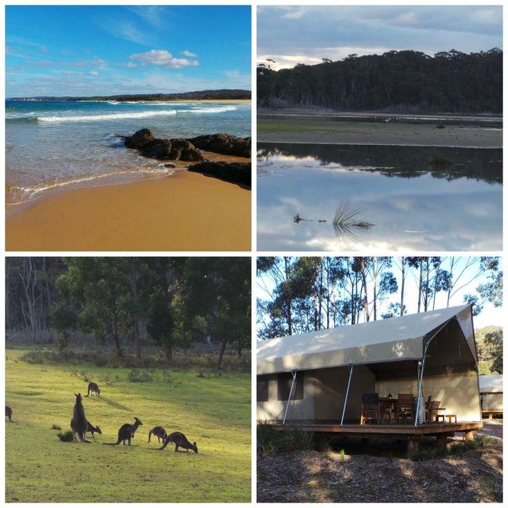 Tanja Lagoon Camp NSW Australia