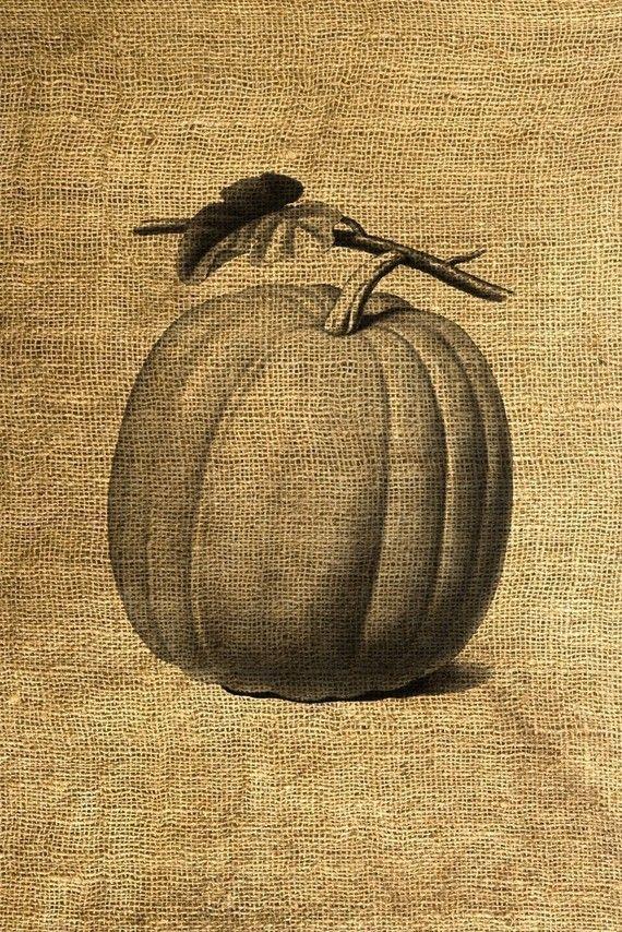 Vintage Pumpkin Illustration - $3 | Crafts | Pinterest ...