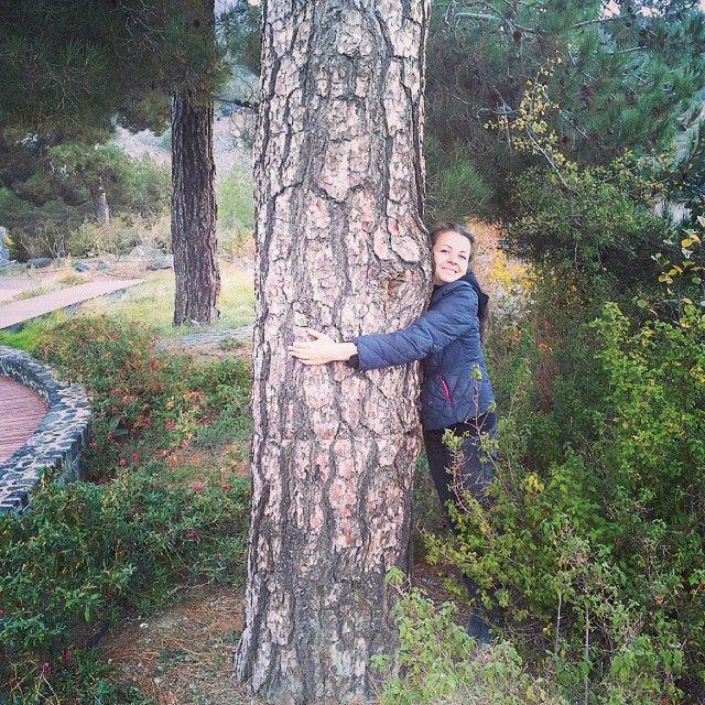 Making Love !!! #makinglove#I'matreehugger#treehugger#ana_maria_stefania…
