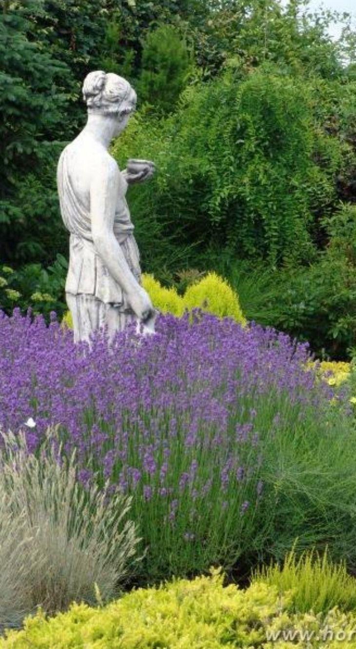 Great Lavender, Hortulus Thematic Gardens In Dobrzyca, Poland. Lavender GardenGarden  StatuesGarden ...