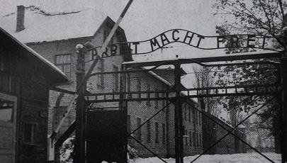 """Il dossier di """"La Storia siamo noi"""" per il """"Giorno della Memoria"""" -   Il 27 gennaio del 1945 l'Armata Rossa entra nel campo di sterminio nazista di Auschwitz e libera i prigionieri superstiti: il mondo scopre così l'orrore dell'Olocausto."""