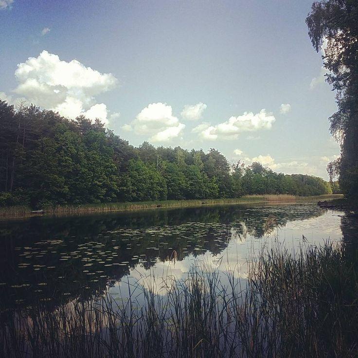 Życie nadal jest piękne.  #neirawypełzaznory #dzieńdobry #pięknapogoda #jezioro #Polskajestpiękna #woda #słońce #las #słonecznydzień #dobreżycie #szczęście  #goodlife #goodmorning #beautifulweather #lake #forest #water #sun #sunnyday #happiness #Polandisbeautiful #beautifulday