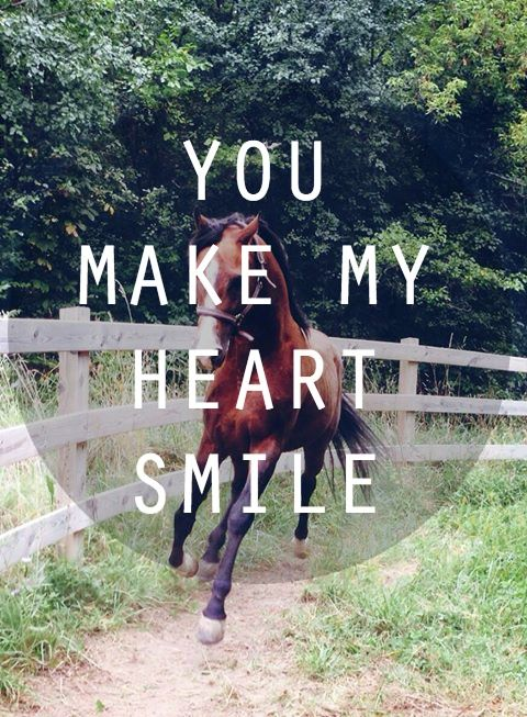 "Horse quote, ""You make my heart smile."" #horse #horses #equestrians Photo credit: Brooke Ashley Collins Model: King AHEART"