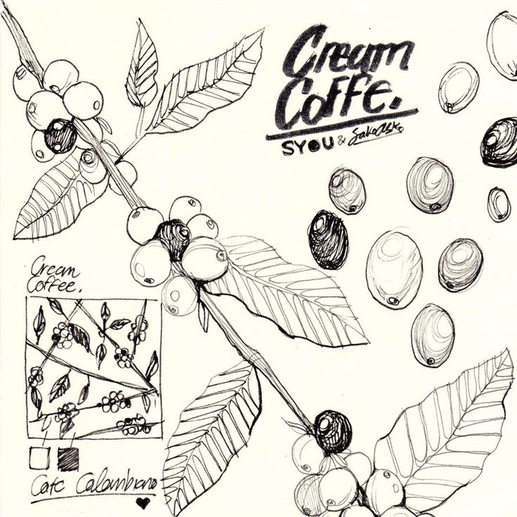 Perfect day for coffee! #sketch #coffee #syouandcolombia