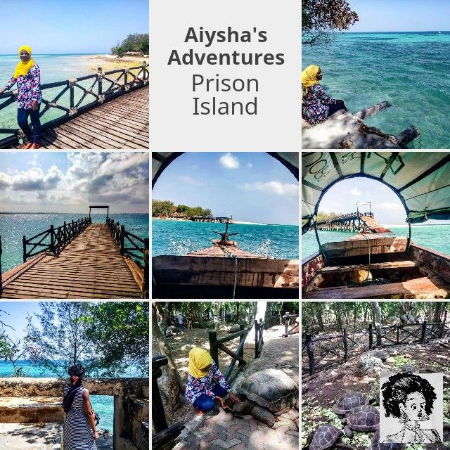 #zanzibar Prison Island tour