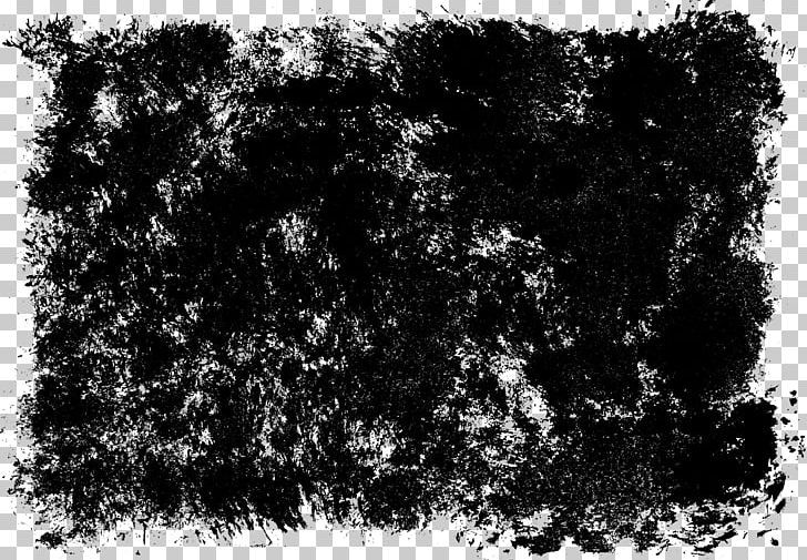 Grunge Photography Black And White Texture Png Art Black Black And White Branch Grass Grunge Photography White Texture Black Grunge