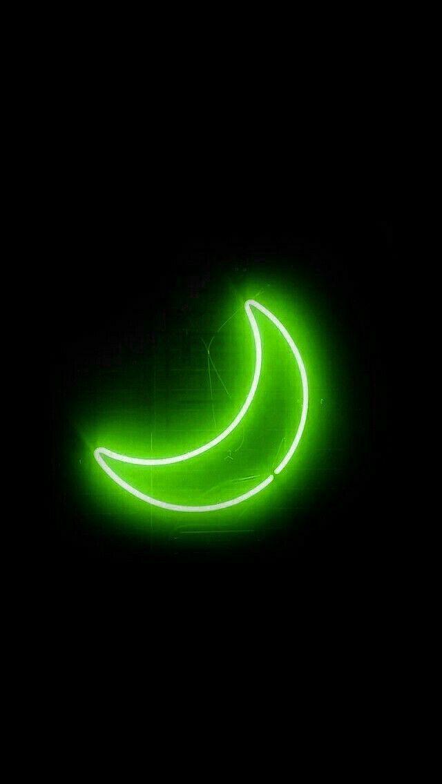 Pin By ѕynsѕvyiiu On Ayeѕtnyeti Dark Green Aesthetic Green Aesthetic Green Aesthetic Tumblr