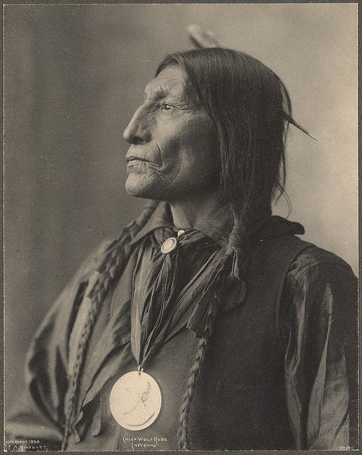 Spectacular portrait of Chief Wolf Robe, Cheyenne photographed by F.A. Rinehart. (c. 1898).